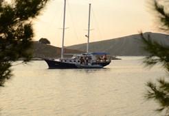 Wooden boatGulet Ana 1 for sale