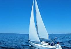 Sailing BoatSAS - Vektor 36