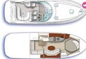 Sea Ray 375